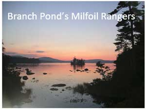 Branch Lake Milfoil Rangers